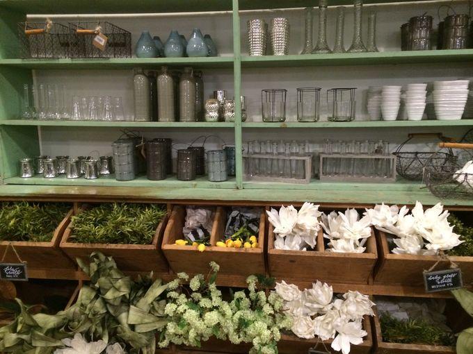 Magnolia- market vases