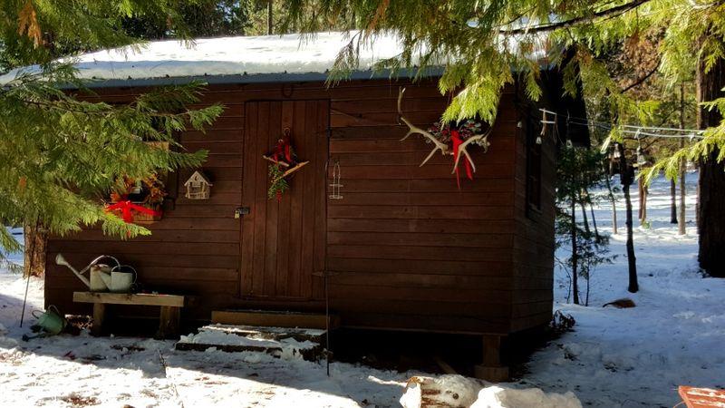 Cabin- 2016 bunkie christmas