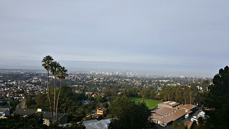 Oakland temple view
