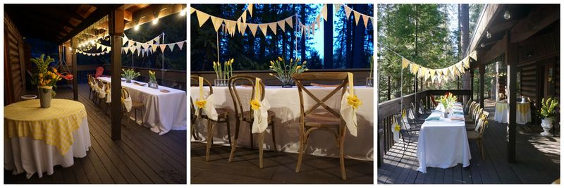 Cabin daffodil day night Collage