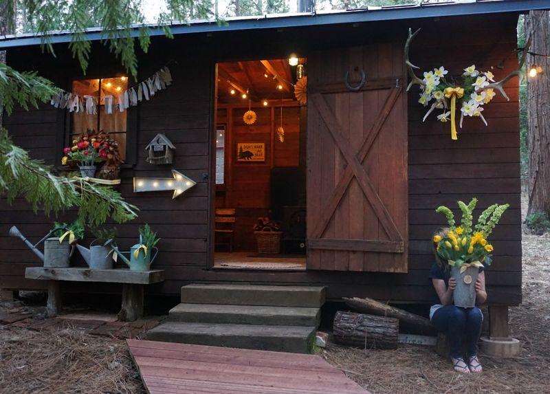 Cabin daffodil day sandi sitting