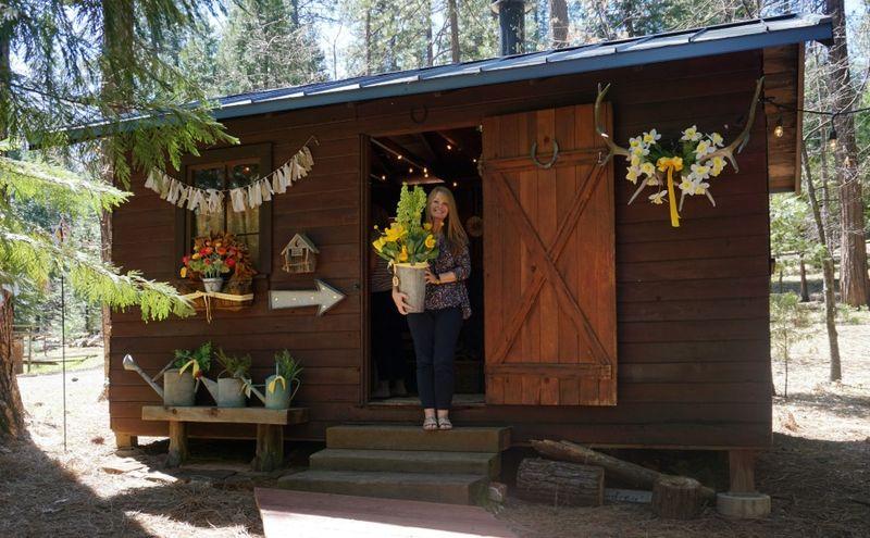 Cabin daffodil day Kristy