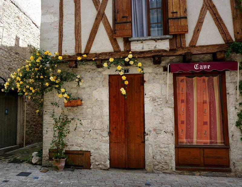 Academy france brown door roses 764