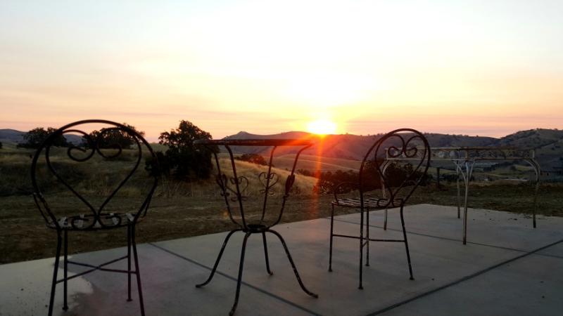 Poppy hill sunrise