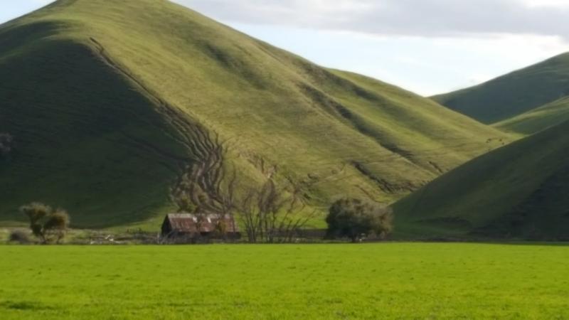 Poppyhill green hills