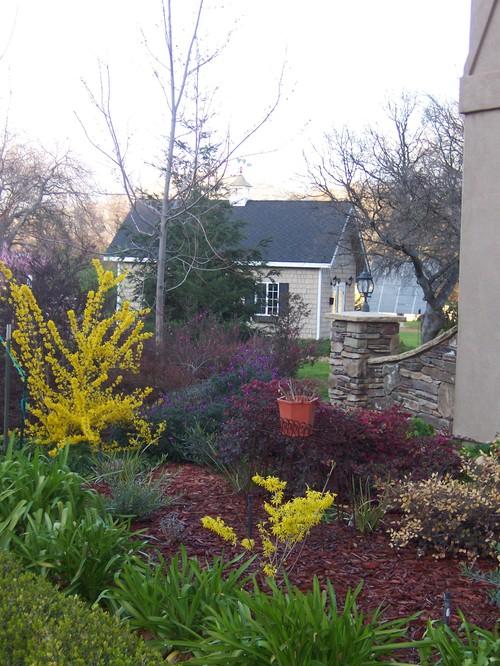 Spring 2008