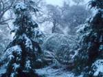 Snowfeb2007_007