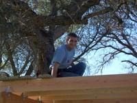 Treehousefeb2006_010